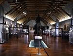 La sala del Museo del Risorgimento di Palermo con la statua di Garibaldi a cavallo