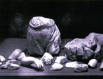 I frammenti del San Giovannino